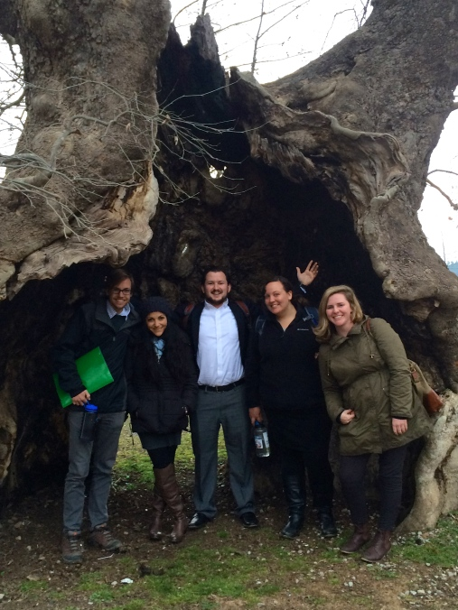 Here are my fellow Shushicers standing inside a huge tree in the Byshek, a lovely, historical park in our village.