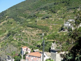 CT's steep hillsides are heavily terraced.
